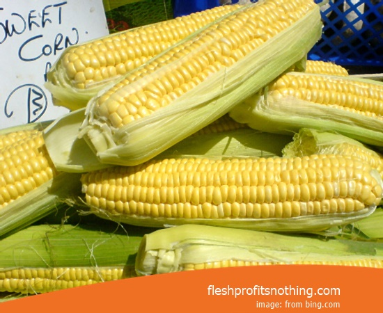 Price Sell of Corn Seeds Home Depot