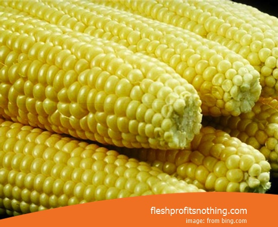 New Varieties of Corn Seeds To Sprout